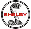 Expertise in Shelby